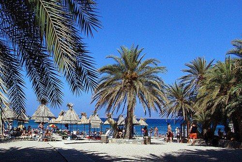 Пальмовый рай - одно из лучших мест Крита